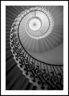 Tulip Stairs Poster