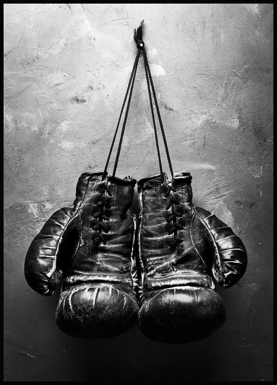 Boxing Gloves Poster